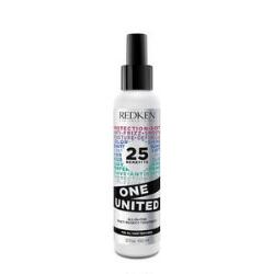Redken One United Multi-Benefit All-In-One Hair Treatment & Salon Products