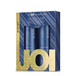 Joico Moisture Recovery Holiday Set