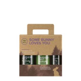 Paul Mitchell Some Bunny Loves You Tea Tree Lavender Mint Gift Set