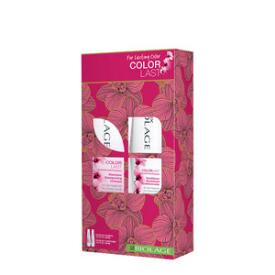 Biolage Color Last Gift Set
